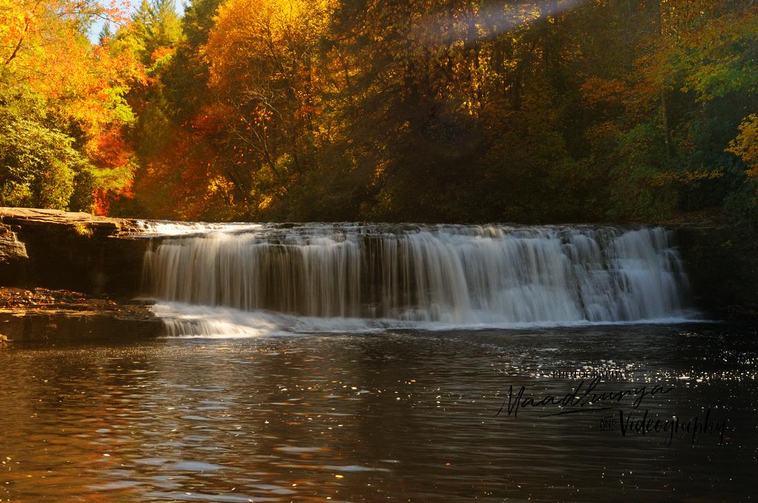 Hooker Falls, Dupont Forest, NC_483