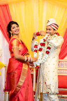 Vikram and Sonal Wedding and Reception