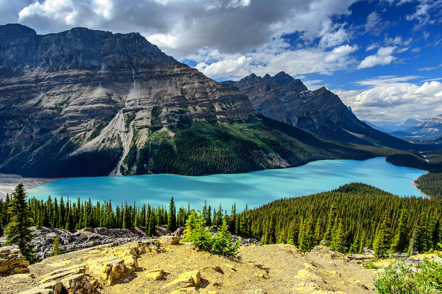 nationalpark alberta kanada - photo #29